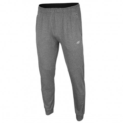 Clothing - 4f Men Trousers SPMTR003 | Fitness