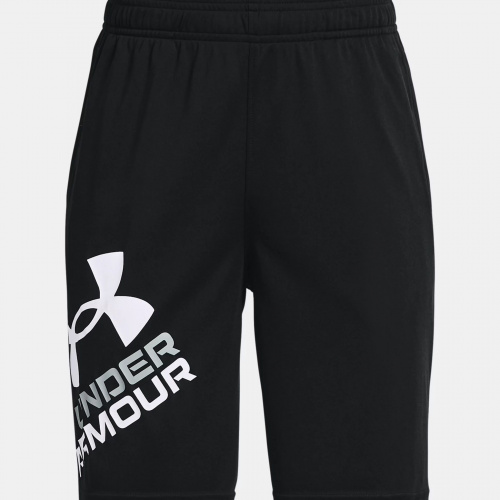 Clothing - Under Armour UA Prototype 2.0 Logo Shorts 1817 | Fitness